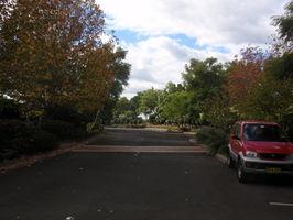 Ve Wollongong už se podzim projevuje mnohem viditelněji, než v Sydney..